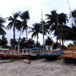 Puerto de Gallinas, Pernambuco, soplalebeche